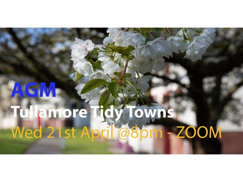 agm-tidy-towns